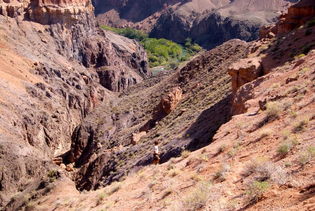 Cherchant une piste pour accéder au fond du Canyon
