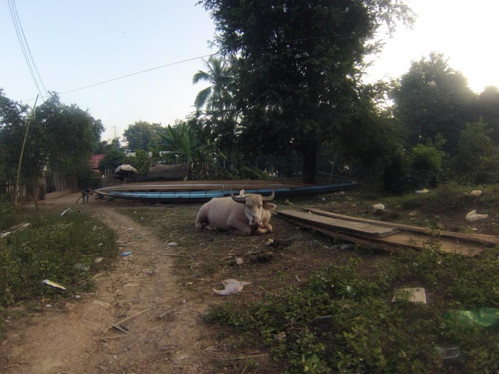Village authentique de l'autre coté du Mékong